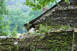 Abbaye de Bon Repos, Franta