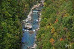 Canion Tara, Muntenegru