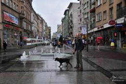 Wroclaw, Polonia