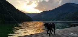 Erlaufsee, Austria