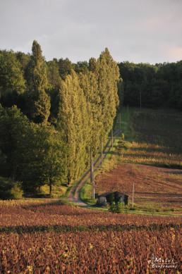 France Aquitane