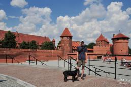 Malbork, castelul, Polonia