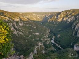 Gorges du Tarn-Point Sublime, Franta